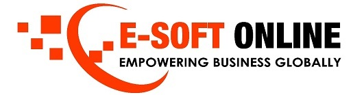 E-Soft Online: Authorized Seller of Microsoft, Google, Adobe